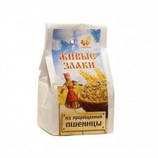 Живые злаки из пророщенной пшеницы 300г Дивинка